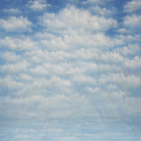 walimex pro Motiv-Stoffhintergrund Heaven, 3x6m Nr. 15831