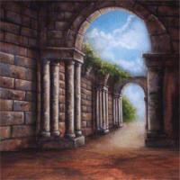 walimex pro Motiv-Stoffhintergrund Roma, 3x6m Nr. 16468