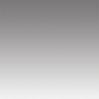 walimex Verlaufshintergrund 1,5x2m, grau Nr. 16504
