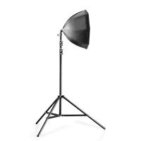 walimex pro 2er Set Daylight 250+ Octagon+ Stativ Nr. 20340