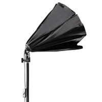 walimex Daylight 250 mit Octagon Softbox, Ø 55cm Nr. 16236