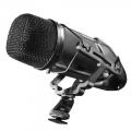 walimex pro Stereo Richtmikrofon Director 1 DSLR Nr. 18320